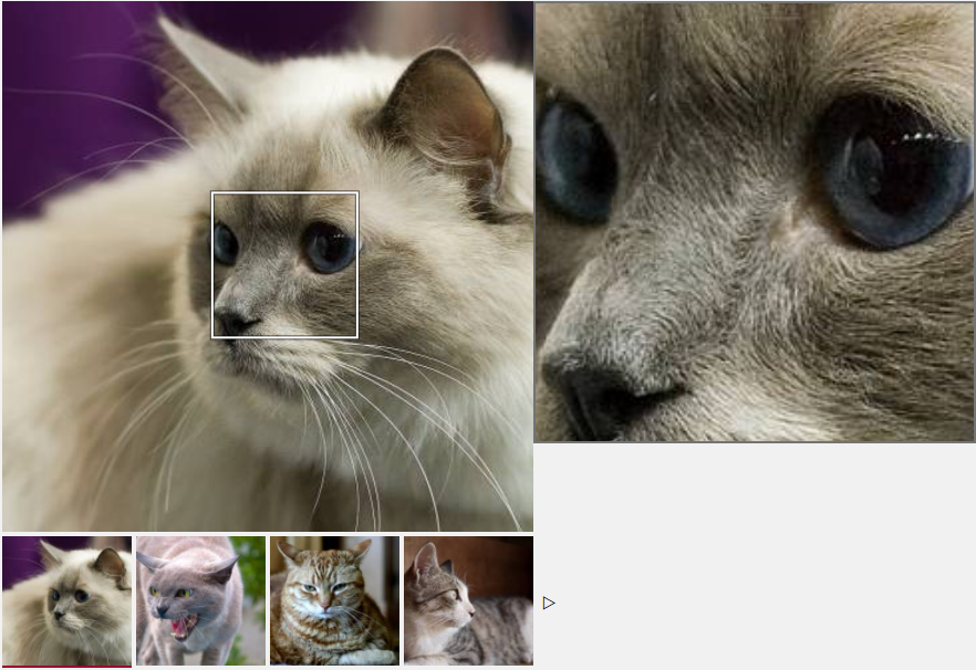 AngularJS Image Zoom Example